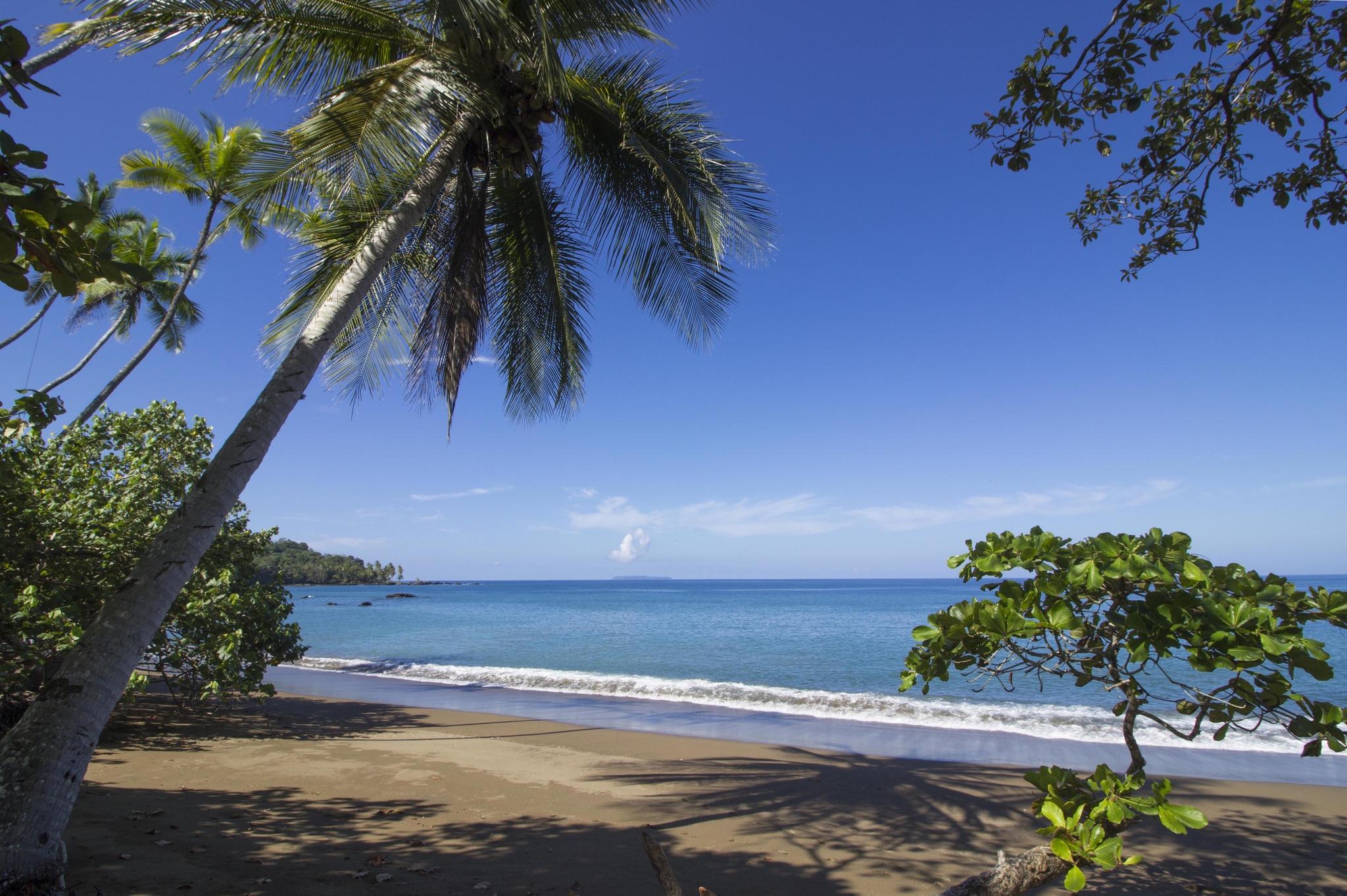 Plage paradisiaque à Drake Bay